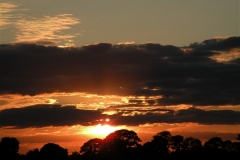 Beautiful Summer Sunset