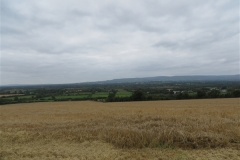 Field of Barley ripe for harvest with the Slieve bloom mountains in the background