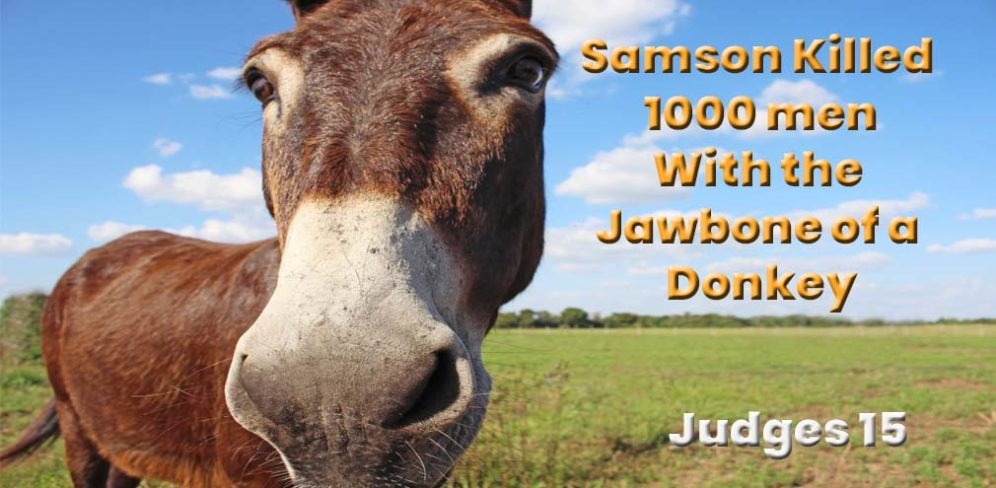 Samson Killed 1,000 men with a Donkeys Jawbone - Judges 15