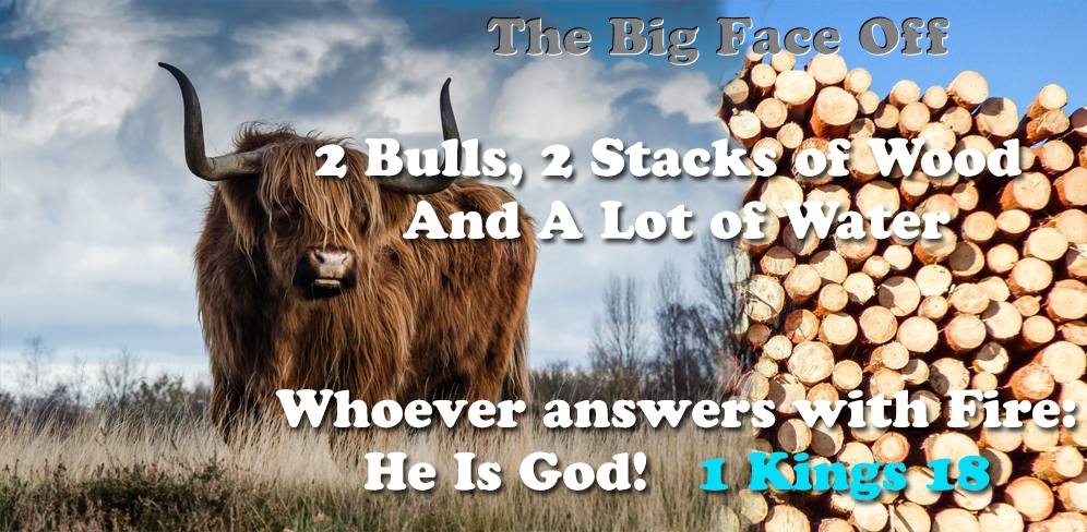 The Big Face Off: 2 bulls, 2 stacks of Wood & a lot of water - Whoever answers with Fire, He is God - 1 Kings 18
