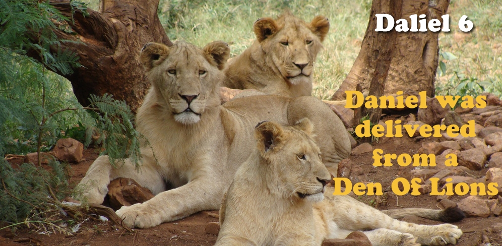 Daniel Was delivered from a Den of Lions - Daniel 6
